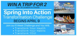 spring into action 6 week transformation challenge