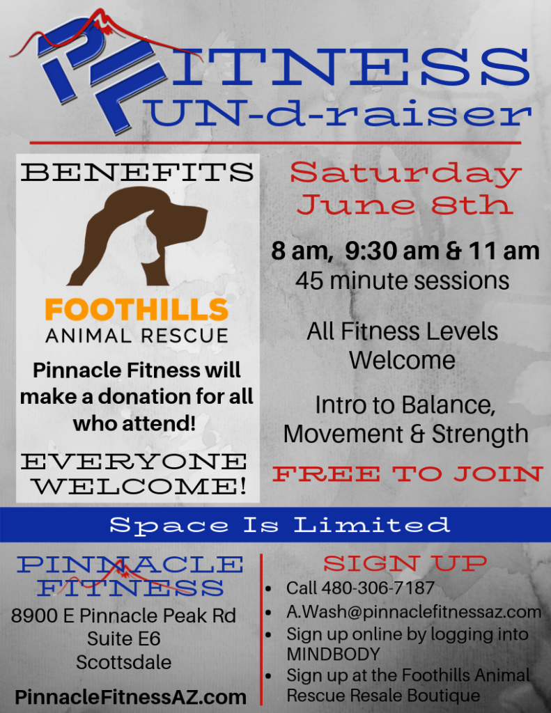 Foothills Animal Rescue fundraiser